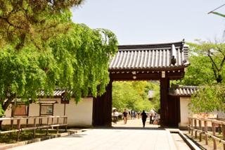 スタッフのブログ:醍醐寺と勧修...