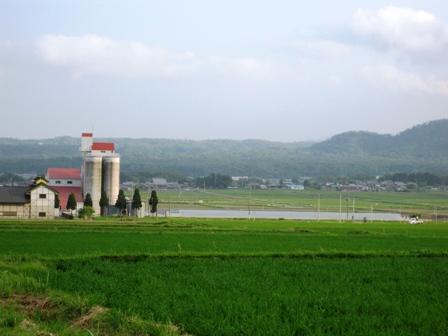 風景の画像 p1_11